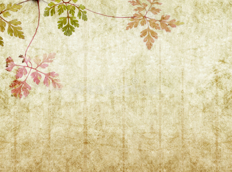 Earthy background image stock images