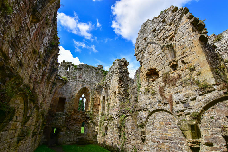 Easby abbotskloster royaltyfri fotografi