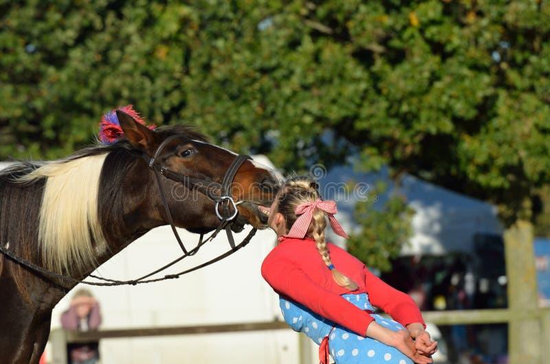 East Anglia Equestrian Fair girl kneeling on horseback. IPSWICH SUFFOLK UK 25 October 2014: East Anglia Equestrian Fair girl kneeling on horseback stock images