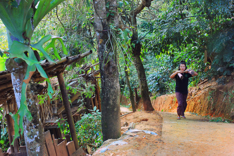 East asia village and people - Karen ethnie in Thailand. Karen ethnie village and people located within the jungle forest of Chiang Mai province , Thaïland royalty free stock image