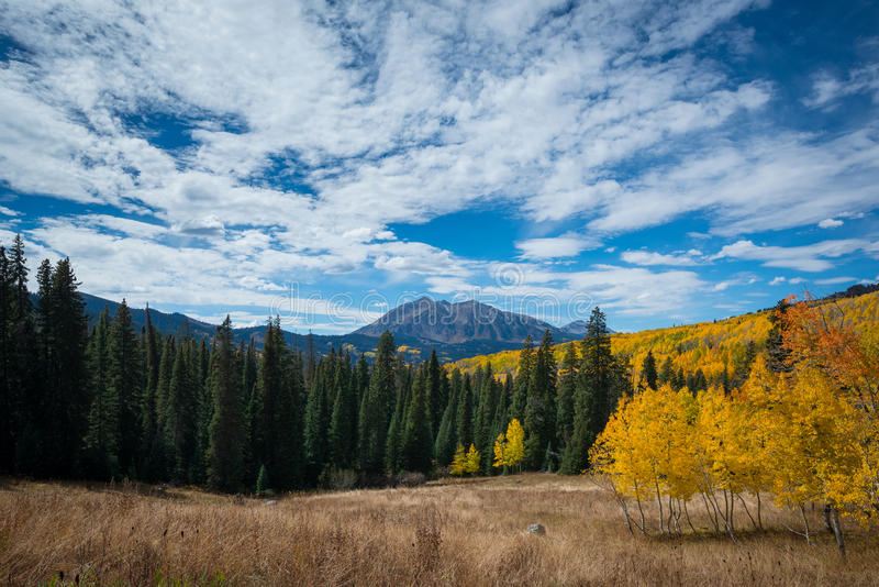East Beckwith Mountain from Kebler Pass. Autumn colors at Kebler pass in Colorado stock photography