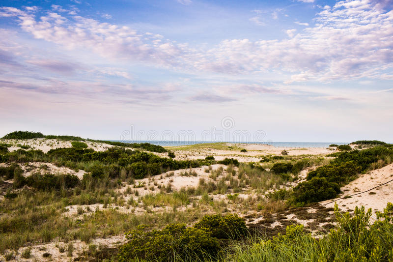 East Coast seaside landscape. Cape Henlopen State Park Atlantic Ocean seaside landscape at sunset stock photo
