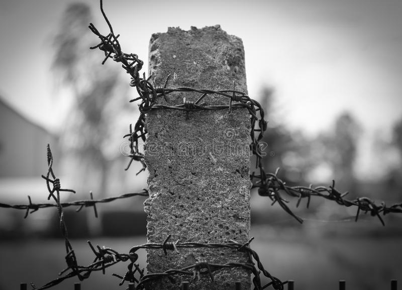 East German Concrete Fence Pillars With Barbed Wire Stock Photo ...
