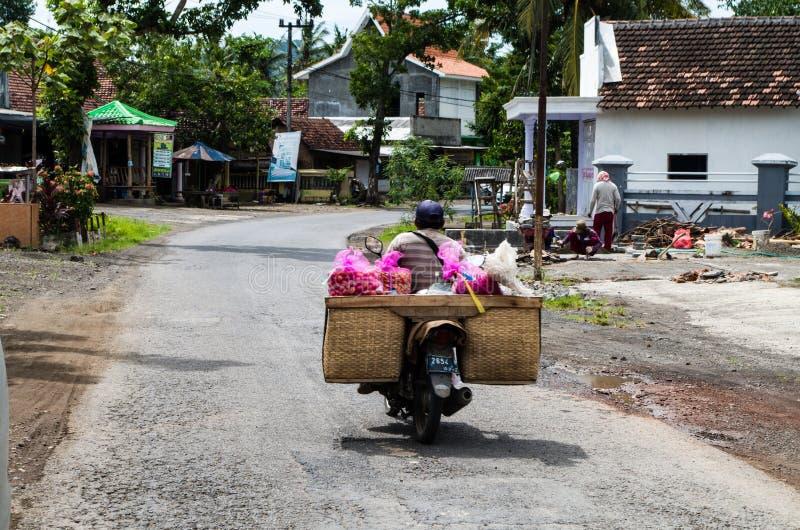 EAST JAVA, ИНДОНЕЗИЯ ЯНВАРЬ 2017: Водитель самоката транспортирует местный плодоовощ для того чтобы выйти на рынок стоковые фотографии rf