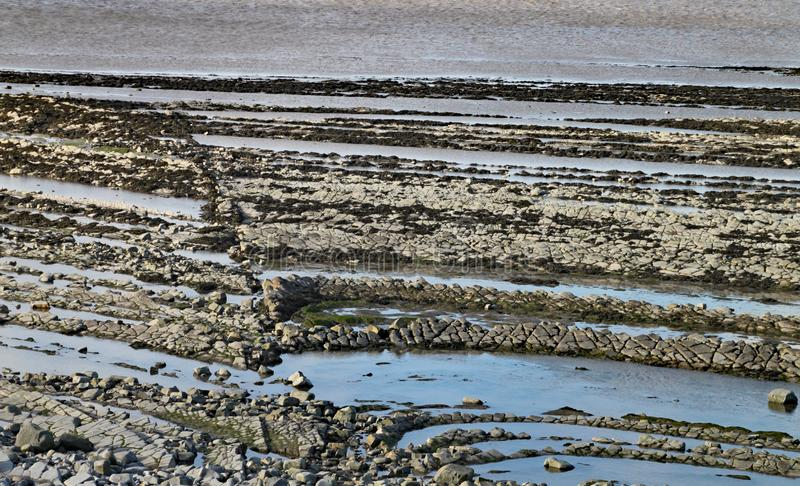 East Quantoxhead beach in Somerset. The limestone pavements date to the Jurassic era and are a paradise for fossil hunters. Ammonites and reptile remains can stock photo