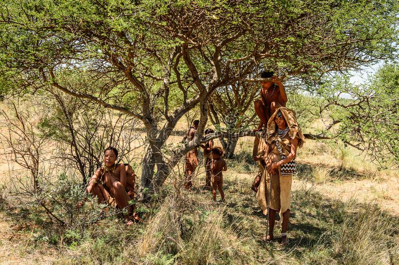 Bushman people in Namibia. EAST OF WINDHOEK, NAMIBIA - JAN 3, 2016: Unidentified bushman family. Bushman people are members of various indigenous hunter-gatherer stock photography