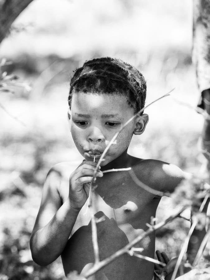 Bushman people in Namibia. EAST OF WINDHOEK, NAMIBIA - JAN 3, 2016: Unidentified bushmen boy. Bushmen people are members of various indigenous hunter-gatherer stock image