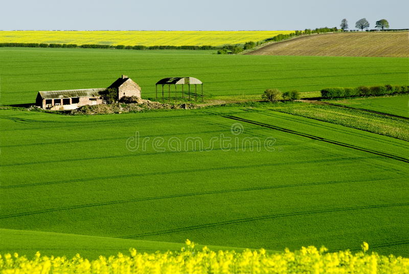 East Yorkshire Wolds stock image
