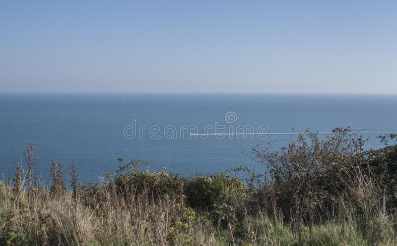 Eastbourne, East Sussex, England - greenery on the shore and the blue seas. This image shows a view of cliffs in Eastbourne, East Sussex, England, the UK. It stock photo