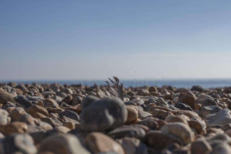 Eastbourne, East Sussex, England - pebbles on the beach, blue skies. This image shows a closeup of some pebbles on the beach in Eastbourne, East Sussex, England stock photography