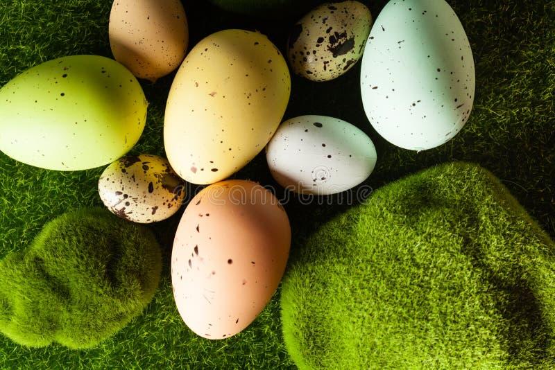 easter ägggräs fotografering för bildbyråer
