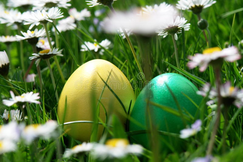 Easter. Colorful Easter egg in the fresh spring meadow stock images