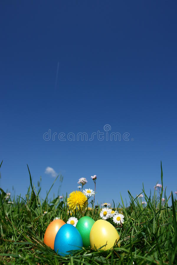 Easter. Colorful Easter egg in the fresh spring meadow royalty free stock image