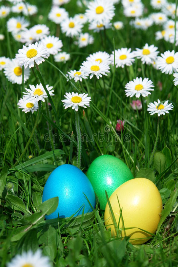 Easter. Colorful Easter egg in the fresh spring meadow royalty free stock photography