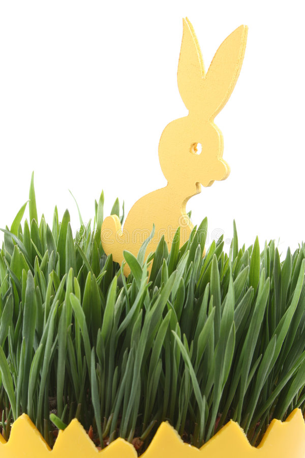 Easter. Egg with green oats and bunny isolated on white stock images