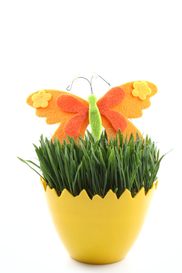 Easter. Egg with green oats and butterfly isolated on white royalty free stock photography