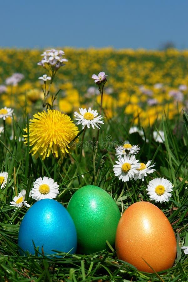 Download Easter stock image. Image of easter, nest, flowers, hunt - 28862871