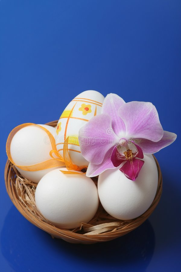 Easter. Eggs in basket with orchid on blue background stock images