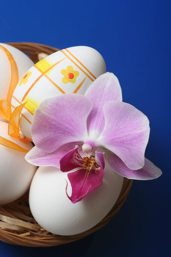 Easter. Eggs in basket with orchid on blue background royalty free stock photography