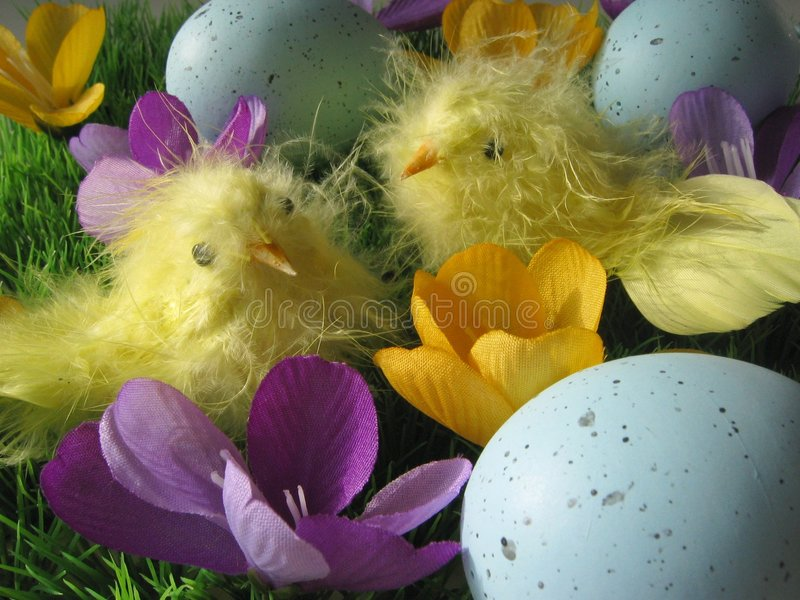 Download Easter arrangement stock photo. Image of spring, grass, purple - 76082