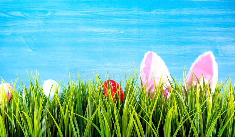 Easter background with colorful eggs, green grass and bunnie ears.  stock photo
