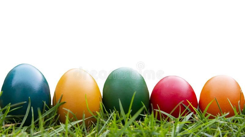 Easter background. Colorful eggs and green grass isolated. White background for copy space. Easter background. Colorful eggs and green grass isolated royalty free stock photo