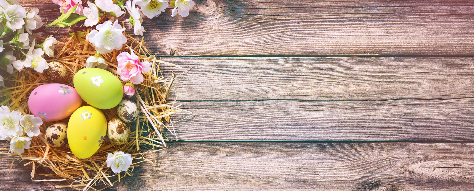 Easter background with Easter eggs in nest royalty free stock images