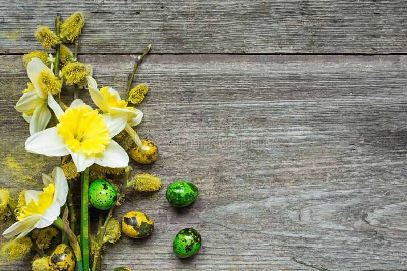 Easter Background with easter eggs and spring daffodil and willow flowers stock image