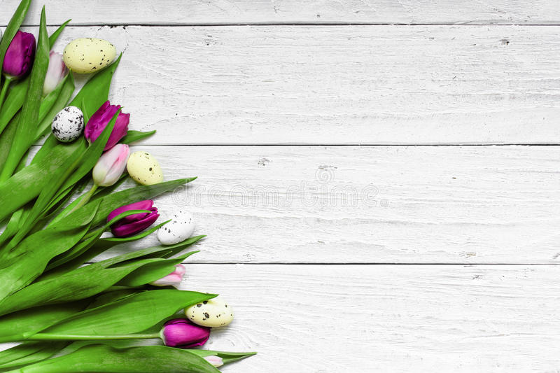 Easter background with eggs and purple tulips royalty free stock photos