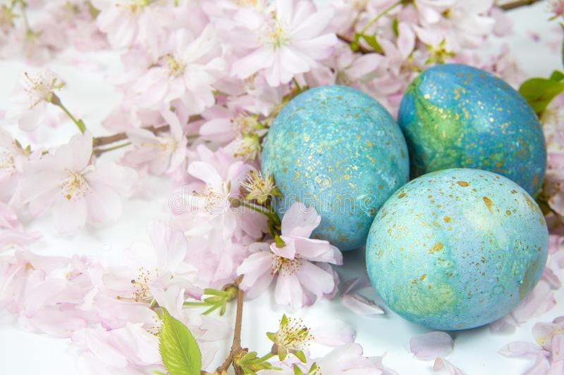 Easter background. Family traditional holidays. Painted eggs with flowering twigs on a light background. It`s spring. Easter eggs with flowering twigs .Spring royalty free stock images