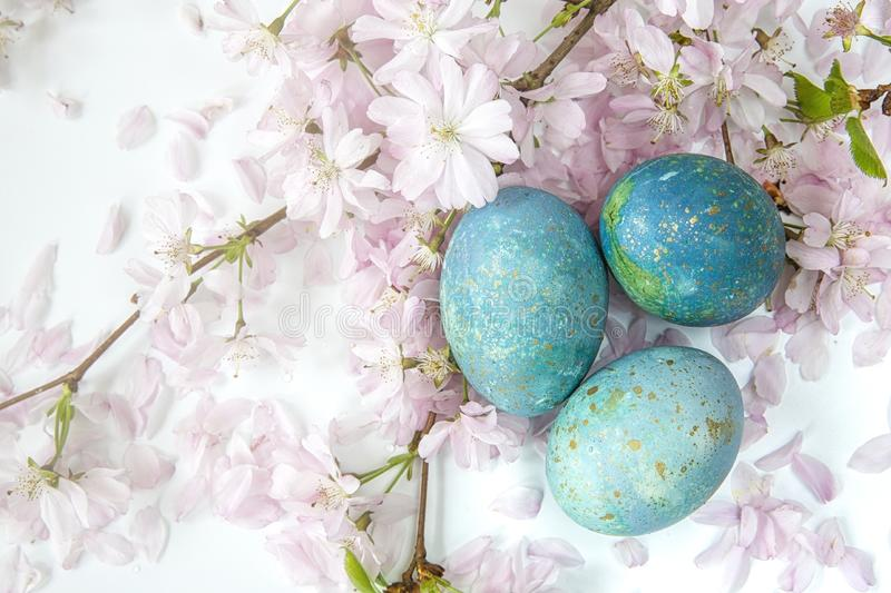 Easter background. Family traditional holidays. Painted eggs with flowering twigs on a light background. It`s spring. Easter eggs with flowering twigs .Spring royalty free stock image