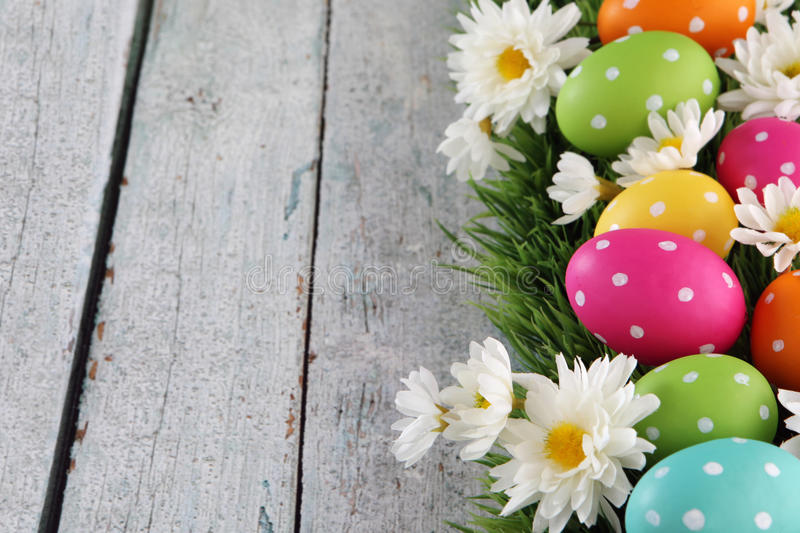 Easter background with grass royalty free stock photos