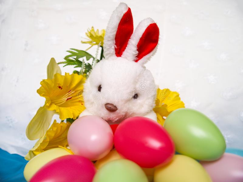 Easter background with plush rabbit, eggs and flower. stock image