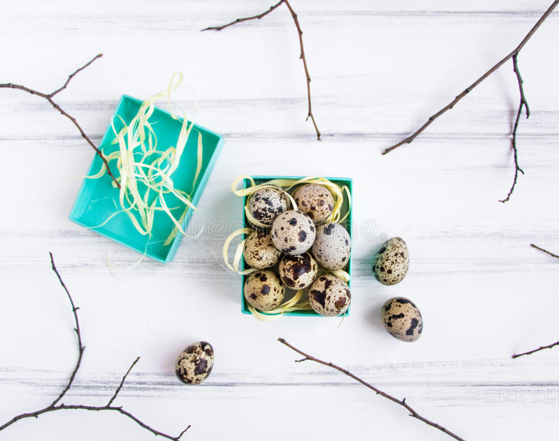 Easter background, quail eggs in a bright box decorated with tree branches. Flat lay, top view, view from above stock photos