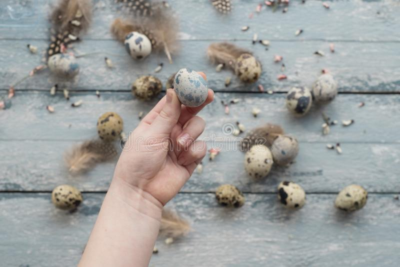 Easter background, small children hands hold quail eggs royalty free stock photography