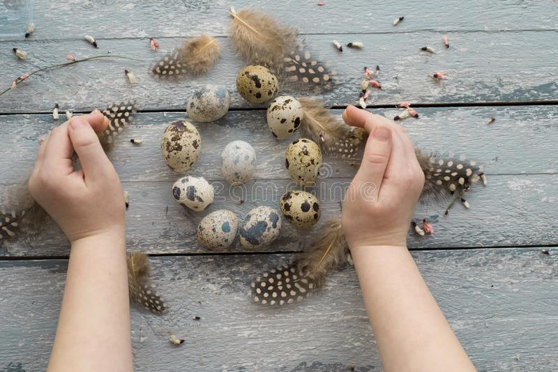 Easter background, small children hands hold quail eggs stock photography