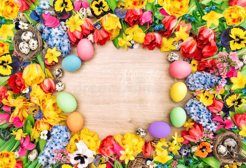 Easter background spring flowers colored eggs Tulips narcissus. Easter background with spring flowers and colored eggs. Tulips, narcissus, hyacinth and pansy stock image
