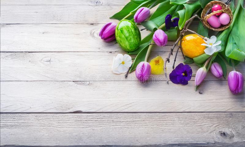 Easter background, spring flowers and Easter eggs on wo royalty free stock image