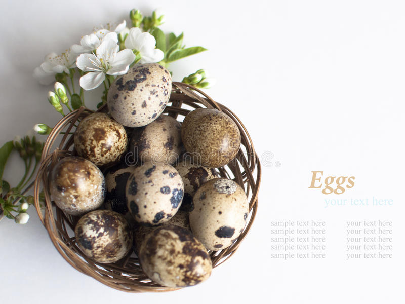 Download Easter Basket With Easter Eggs On White Background Stock Photo - Image of april, bunch: 39508906