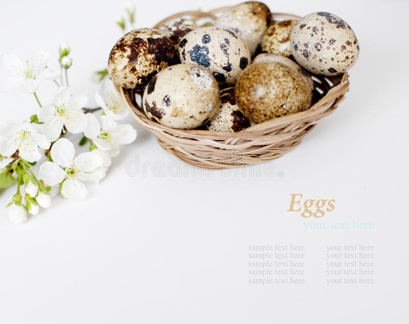 Download Easter Basket With Easter Eggs On White Background Stock Image - Image of decoration, festival: 39508907
