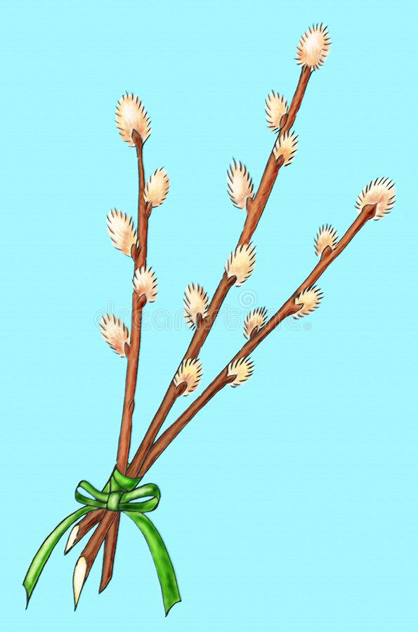 Download Easter bouquet of willow stock illustration. Illustration of religion - 7704397
