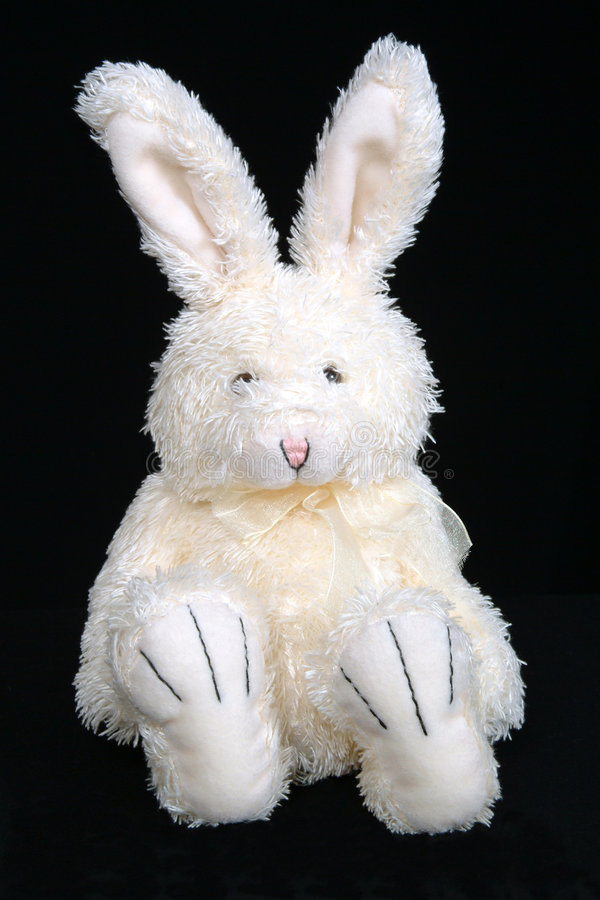 Free Easter Bunny 1 Royalty Free Stock Photo - 66385