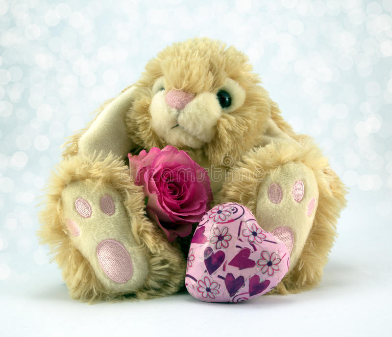 Easter Bunny. Fluffy Easter bunny with pastel pink roses and heart royalty free stock images