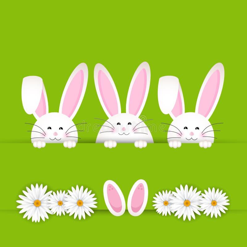 Easter bunny background royalty free illustration