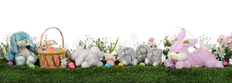 Easter Bunny Border stock photography