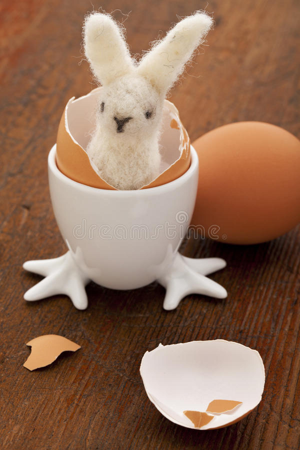 Download Easter bunny and eggs stock photo. Image of shell, wool - 18954666