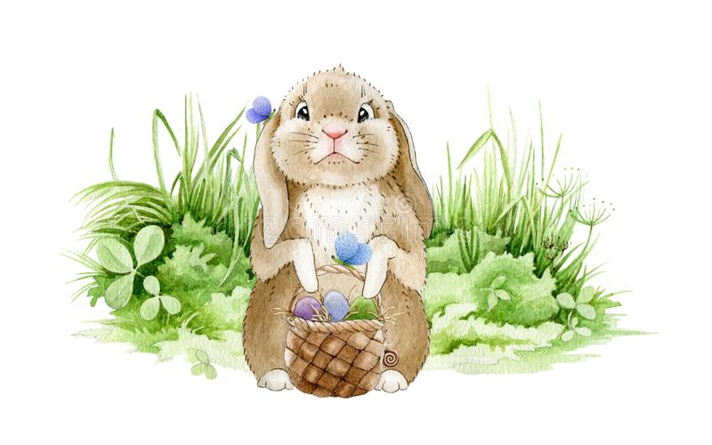 Easter bunny on the meadow watercolor illustration. Funny cute little rabbit on the green grass with a basket full of eggs. Tradit stock photography