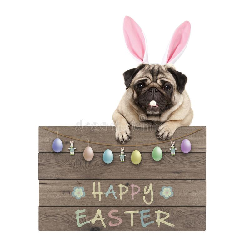 Easter bunny pug dog hanging on wooden sign with text happy easter and pastel decoration royalty free stock photo