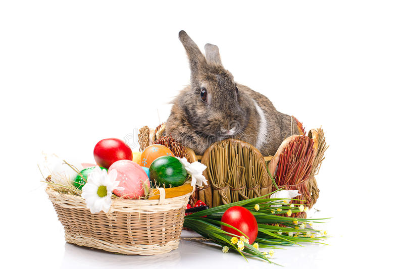 Download Easter Bunny Sitting In A Baske Stock Image - Image: 37790367