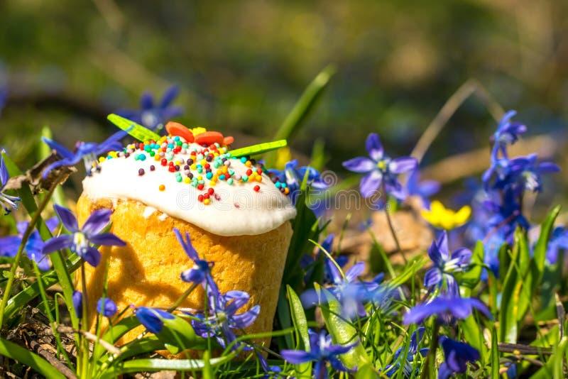 Easter cake in the flowering spring garden stock photography